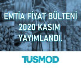 Emtia Fiyat Bülteni 2020'11