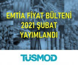 Emtia Fiyat Bülteni 2021'02