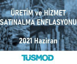 Emtia Fiyat Bülteni 2021'06