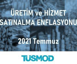 Emtia Fiyat Bülteni 2021'07