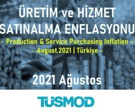 Emtia Fiyat Bülteni 2021'08