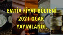 Emtia Fiyat Bülteni 2021'01