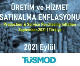Emtia Fiyat Bülteni 2021'09
